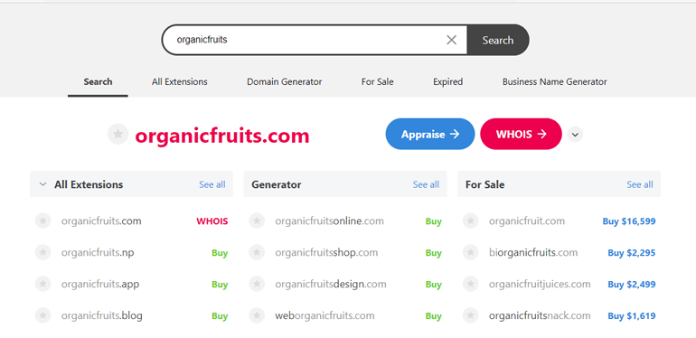Instant Domain Search Results