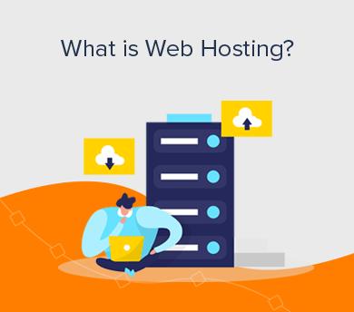 Web Hosting Definition (Beginner's Guide)