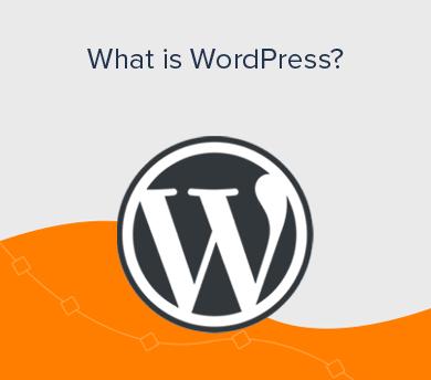 WordPress for Beginners Explained