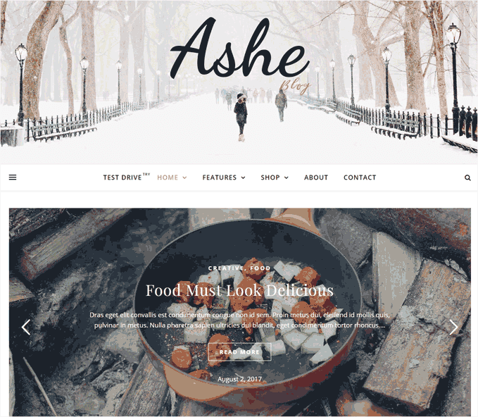 Ashe WordPress Templates