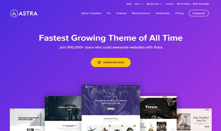 Astra WordPress Theme Free
