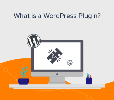 What is a WP Plugin (Explained)