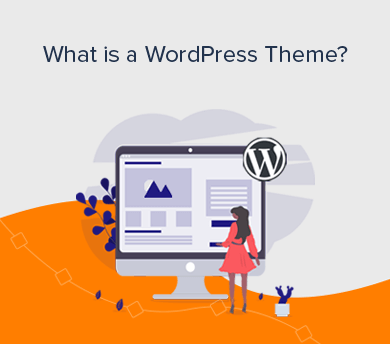 What is a WP Theme (Explained)