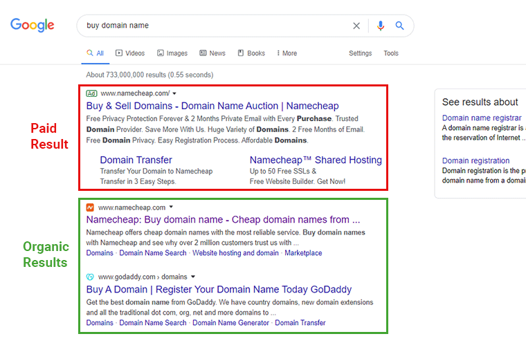 Paid Results and Organic Results in a Google Search