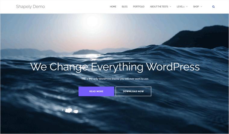 Shapely WordPress Template