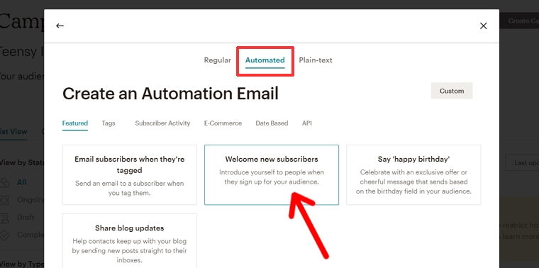 Creating Email Campaign to New Subscribers