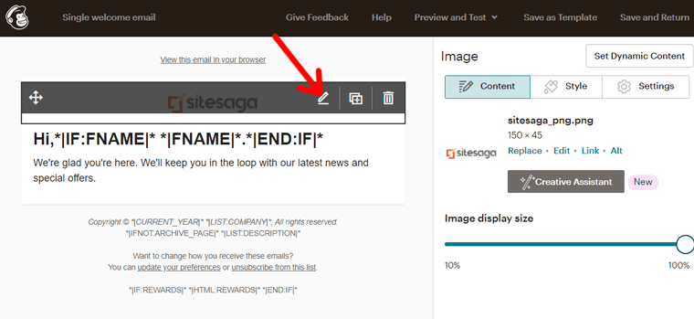 Edit Logo in Your Email