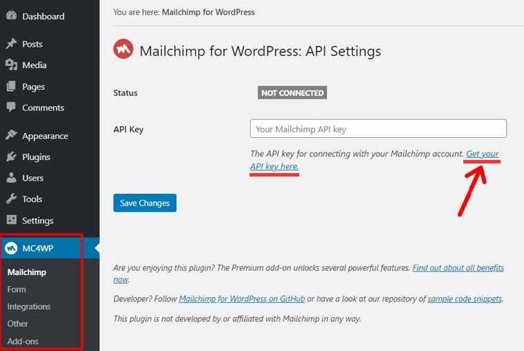 Get Your Mailchimp API Key Option in WordPress