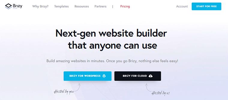 Page Builder Plugin Brizy
