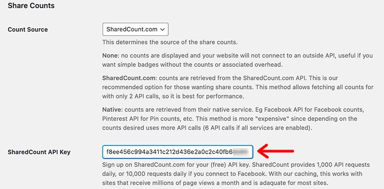 Copy and Paste API Key