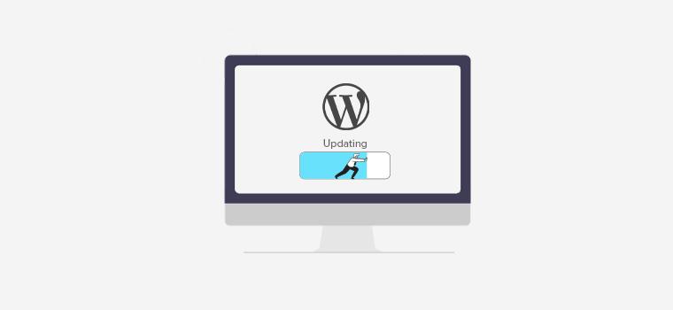 How to  Update Your WordPress Version