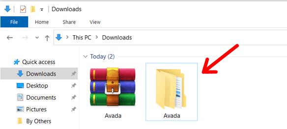 Avada Theme Extracted Folder