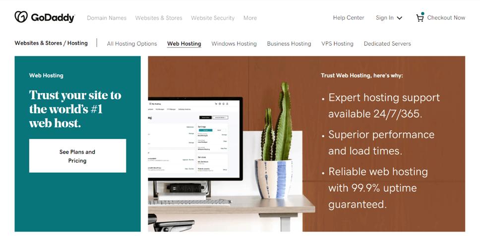 GoDaddy Domain and Hosting Provider