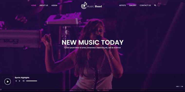Zakra Theme for Musicians