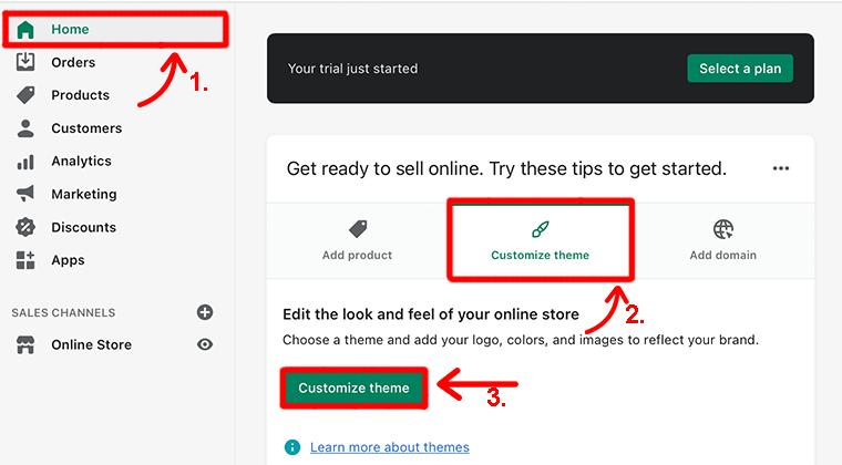 Customize Theme Option
