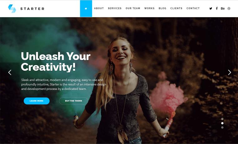 Starter Theme single page slider website