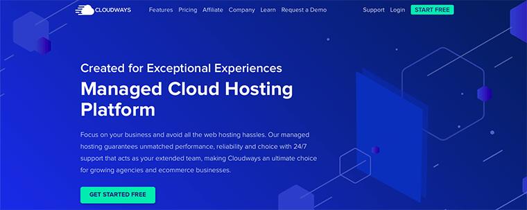 Cloudways WordPress Hosting Service