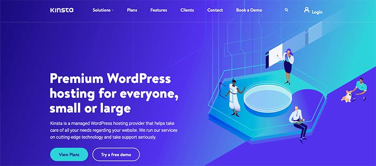 Kinsta WordPress Hosting Service