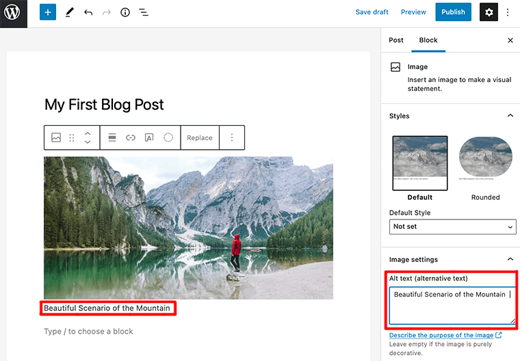 Adding Alt Text and Caption to Image