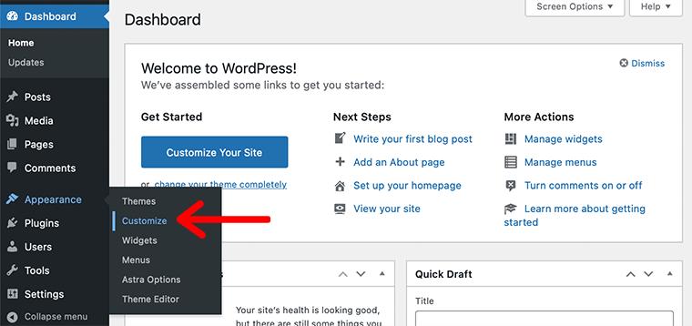 WordPress Customize Option