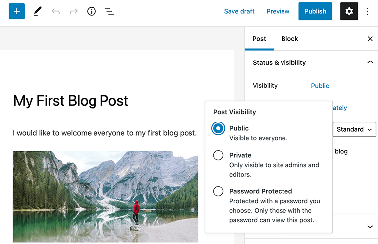 WordPress Post Visibility Option