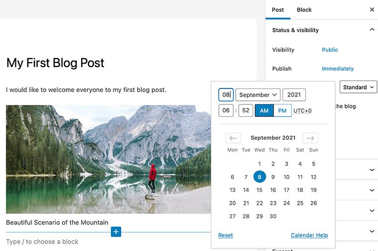 WordPress Publish Schedule Option