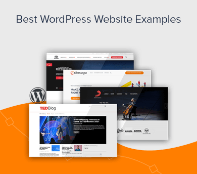 101 WordPress Website Examples to Get Inspired From