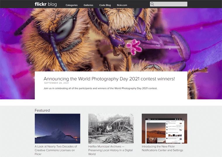 Flickr Blog-best WordPress sites