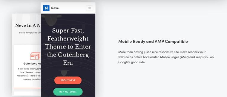 Neve WordPress theme AMP Compatibility